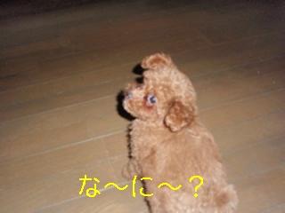 photo_ed7.jpg