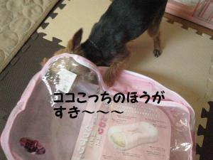 20090220makura3
