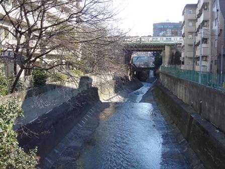 冬の神田川