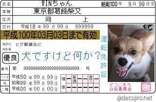 decojiro-20081229-014534.jpg