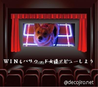 decojiro-20090117-011313.jpg