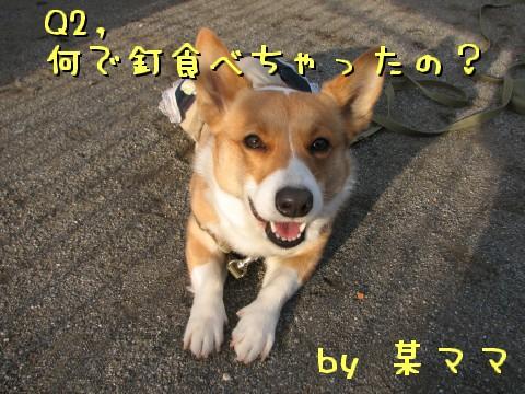 p3_20100224000001.jpg