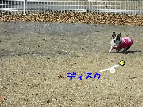 resize2019_20110326133812.jpg