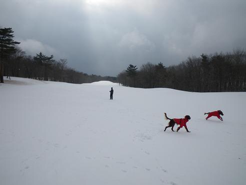 雪だるま 021