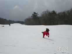 雪だるま 022