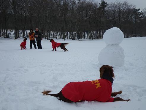 雪だるま 030