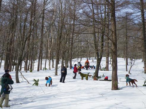 雪山ツアー2・11 015
