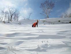 雪山ツアー2・11 041