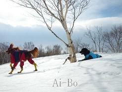 雪山ツアー2・11 017