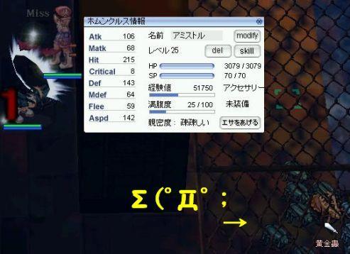 20100810b.jpg