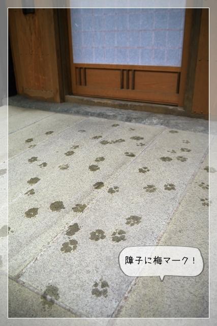 八本木宿15