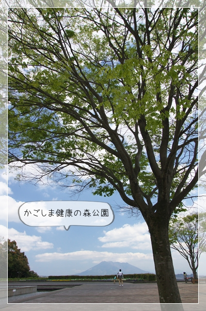 健康の森07