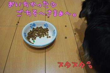 DSC_3121.jpg