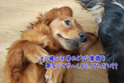 DSC_3145.jpg