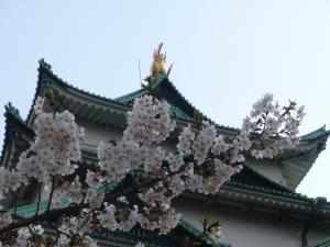 nagoya_castle1184_c54.jpg