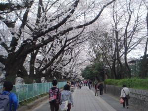 nagoya_castle8869_c57.jpg