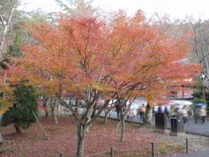 nanzenji0718_c8.jpg