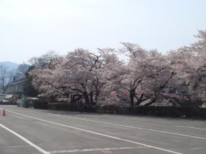 tsurugajyo9243_c8.jpg