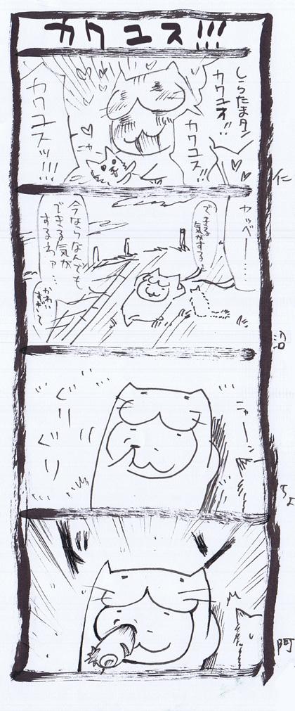 12-3_20110425181004.jpg