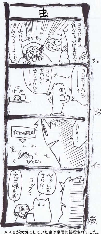 12-6.jpg