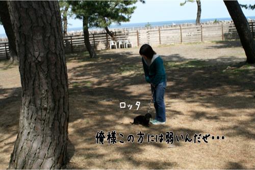 12_20100322193045.jpg