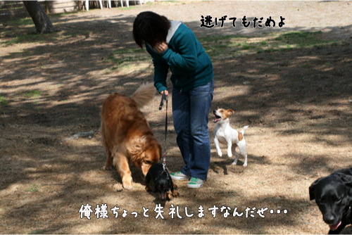 15_20100322193119.jpg