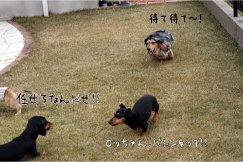 1_20100329191001.jpg