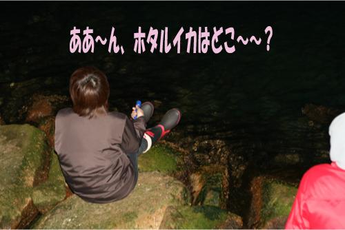 1_20100414211322.jpg