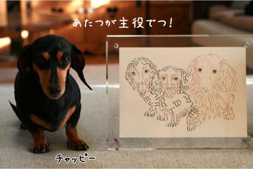 1_20110117221031.jpg