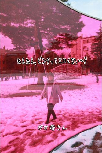 1_20110125113958.jpg