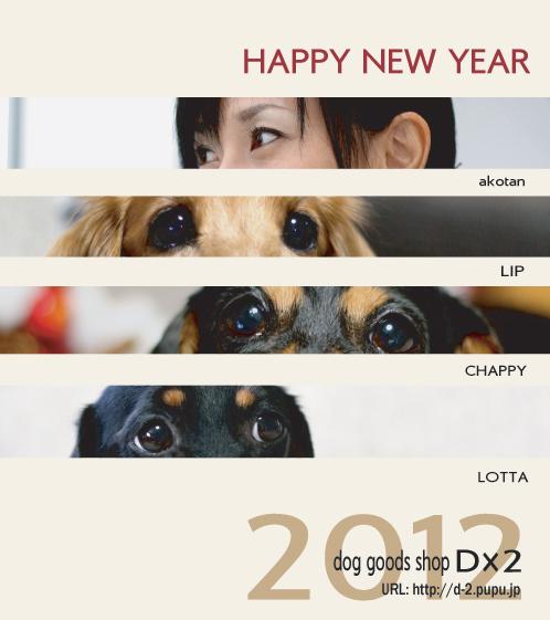 1_20120105234551.jpg