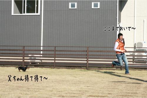 26_20101116223750.jpg