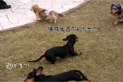 2_20100329191001.jpg