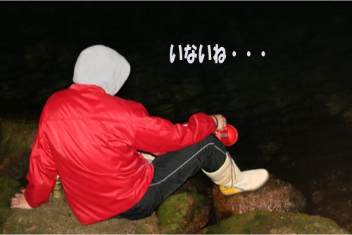 2_20100414211322.jpg