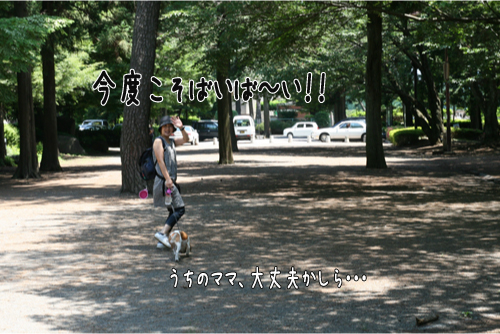 32_20100620073719.jpg