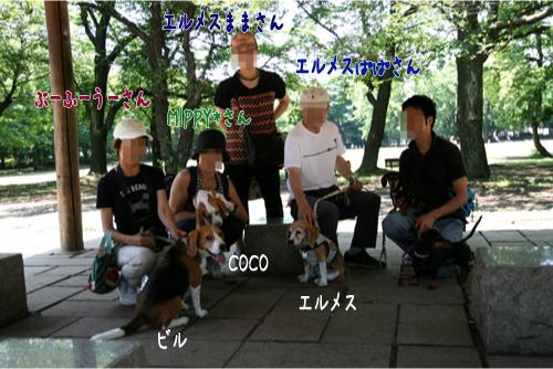37_20100620073718.jpg