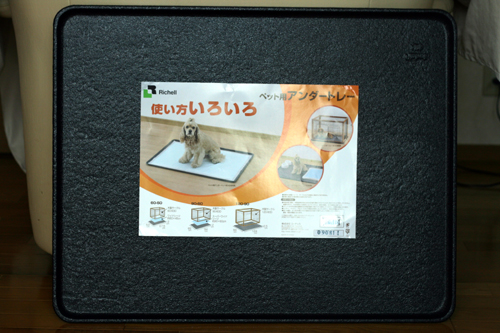 4_20100120114002.jpg