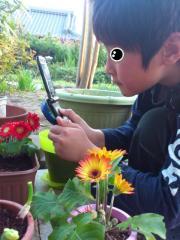2012.04.14 親子菜園(長男携帯撮影姿).jpg