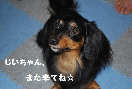 甘えんぼ2