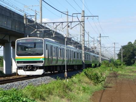 IMGP1092.jpg