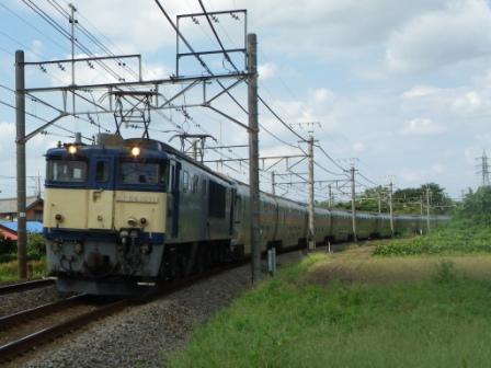 IMGP1180.jpg