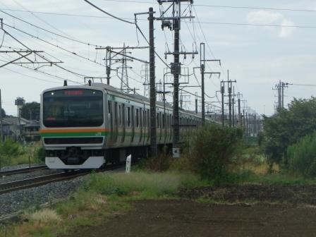 IMGP1288.jpg
