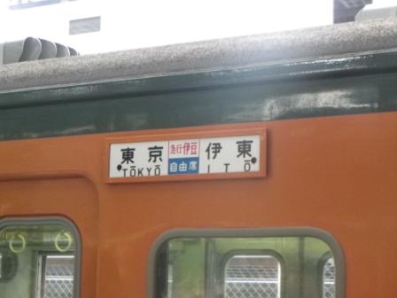 IMGP2491.jpg