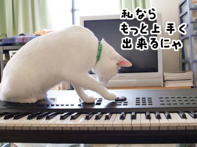 cat1390