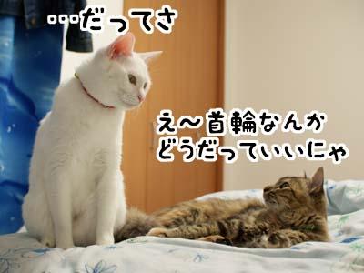 cat1493