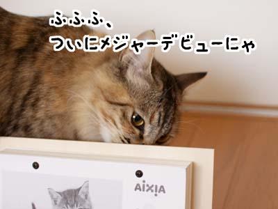 cat1507