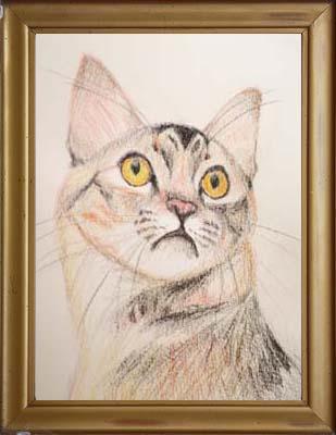 cat1509