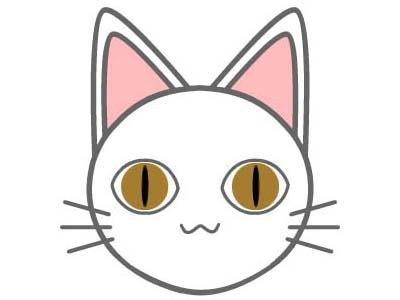 cat1589