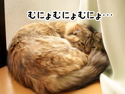cat1630