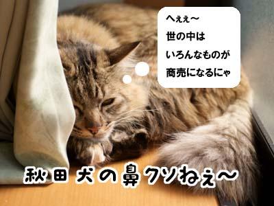 cat1657